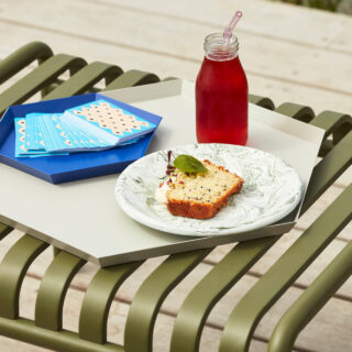Soft Ice Enamel Lunch Plate