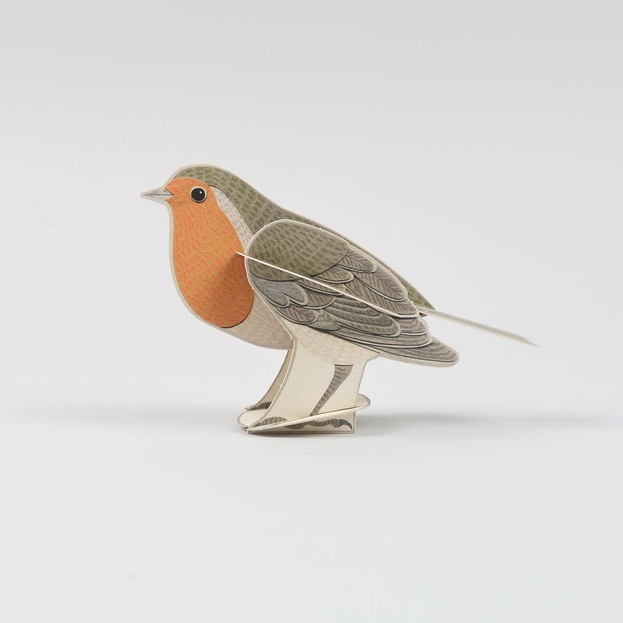 Pop Out Birds by Alice Melvin - Robin
