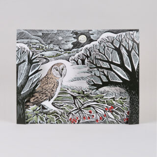 Owl in Winter Advent Calendar by Angela Harding