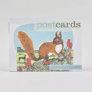 Pack of 12 Angela Harding Postcards - Squirrel