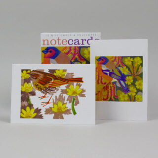 art angels matt underwood notecards birds spring 04