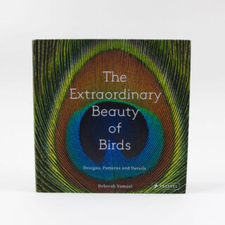 beauty of birds book 1