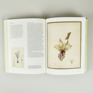 Botanical Sketchbooks - Helen & William Bynum