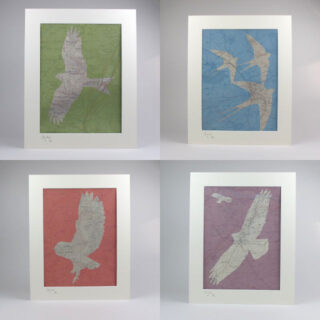 Chris Snow Limited Edition Shropshire Bird Prints By Chris Snow Cocsp 5