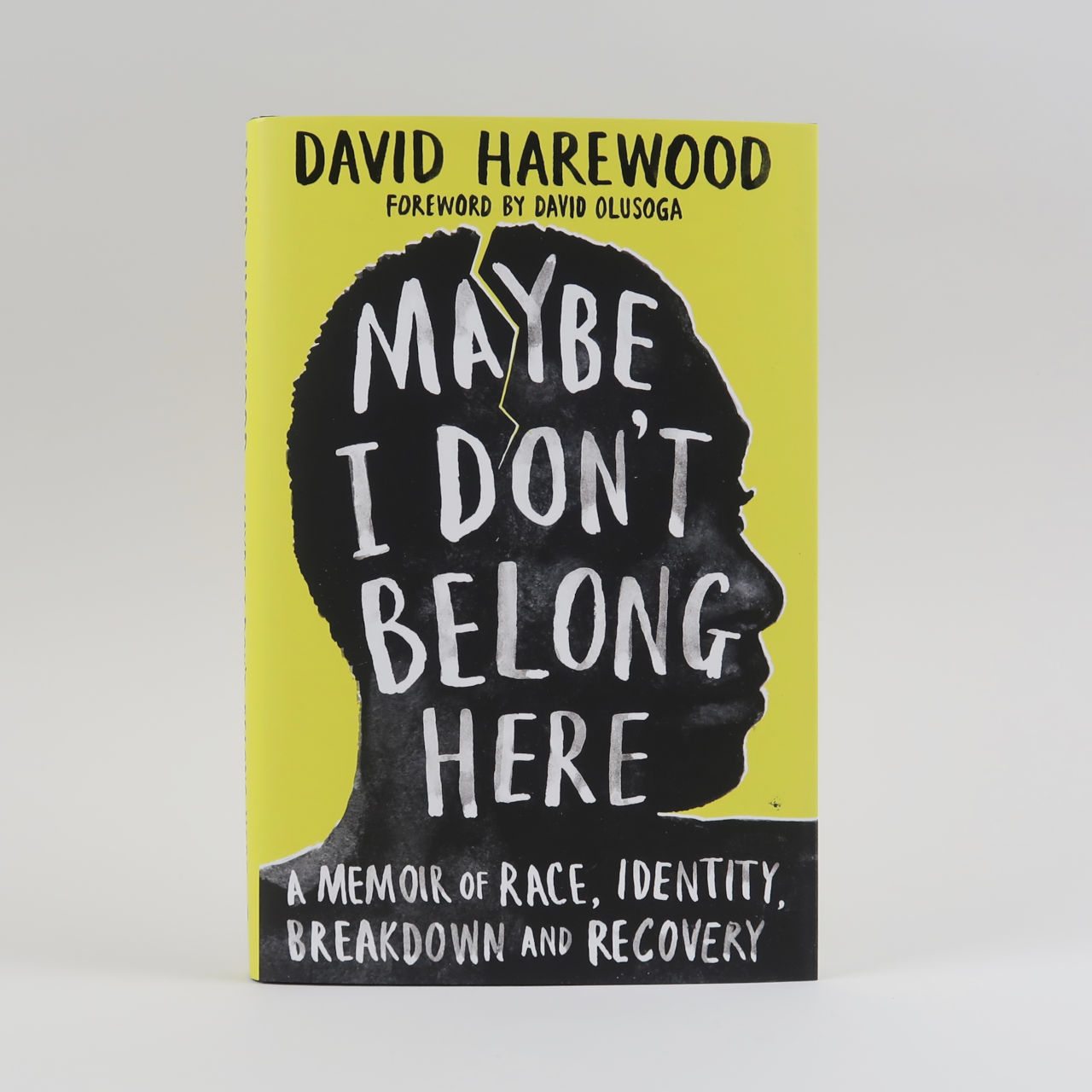 Maybe I Don't Belong Here - David Harewood