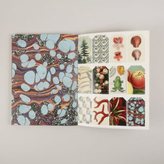 John Derian Wrapping Paper & Gift Tags