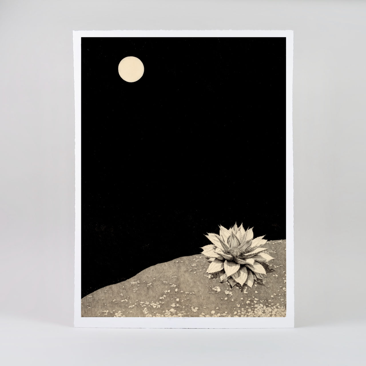 Limited Edition Giclée Print - Night Time Agave
