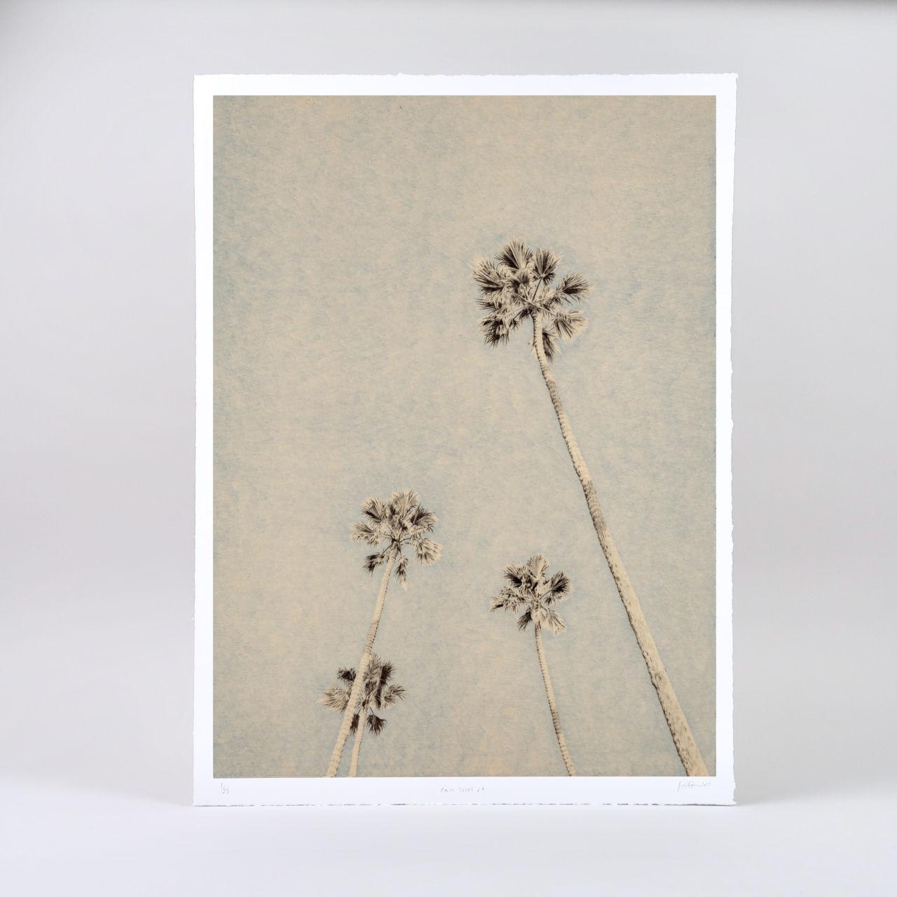 Limited Edition Giclée Print - Palm Trees L.A.