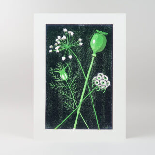 Seed Heads Lino Print by James Brown