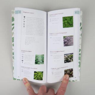 A Pocketful of Herbs - Jekka McVicar