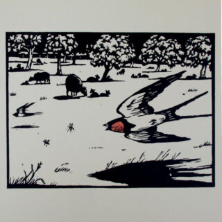 jonathan heale swallows and lambs (3) woodcut 01