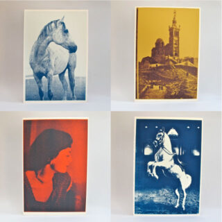 Kate Gibb Screenprints By Kate Gibb Cokg 1