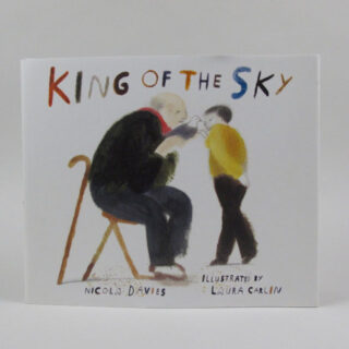 king of the sky book laura carlin 01