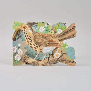 Mark Hearld Die Cut Card - Nest