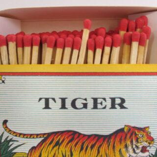 Big Box of Matches - Tiger