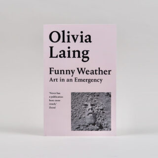 Funny Weather Art in an Emergency - Olivia Laing