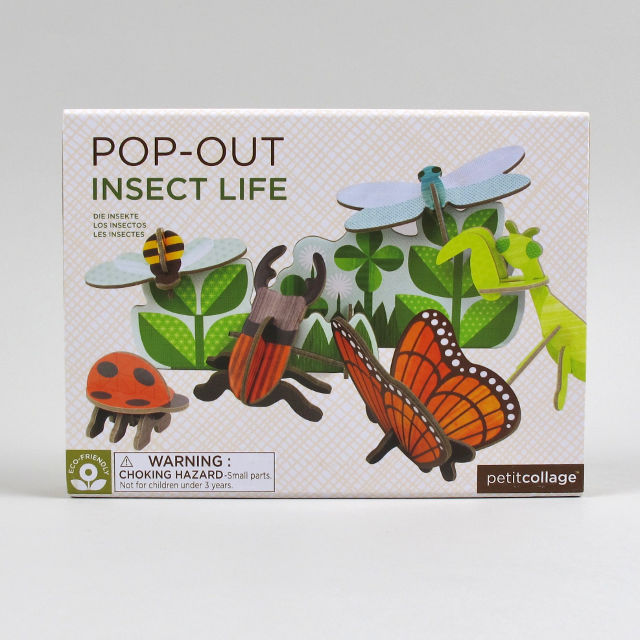 Pop-Out Insect Life