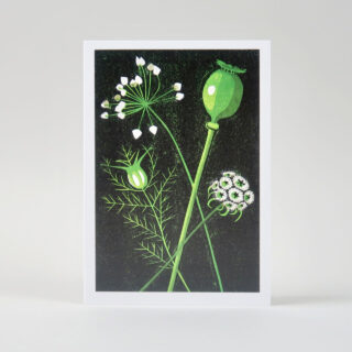 Botanical Cards by James Brown