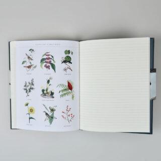 Observer's Notebook - Birds