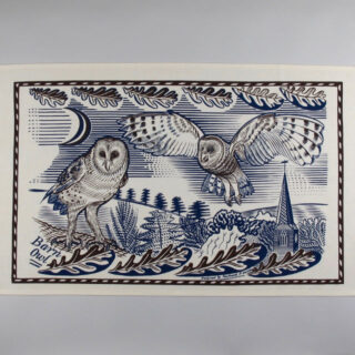 Richard Bawden Tea Towel - Owl