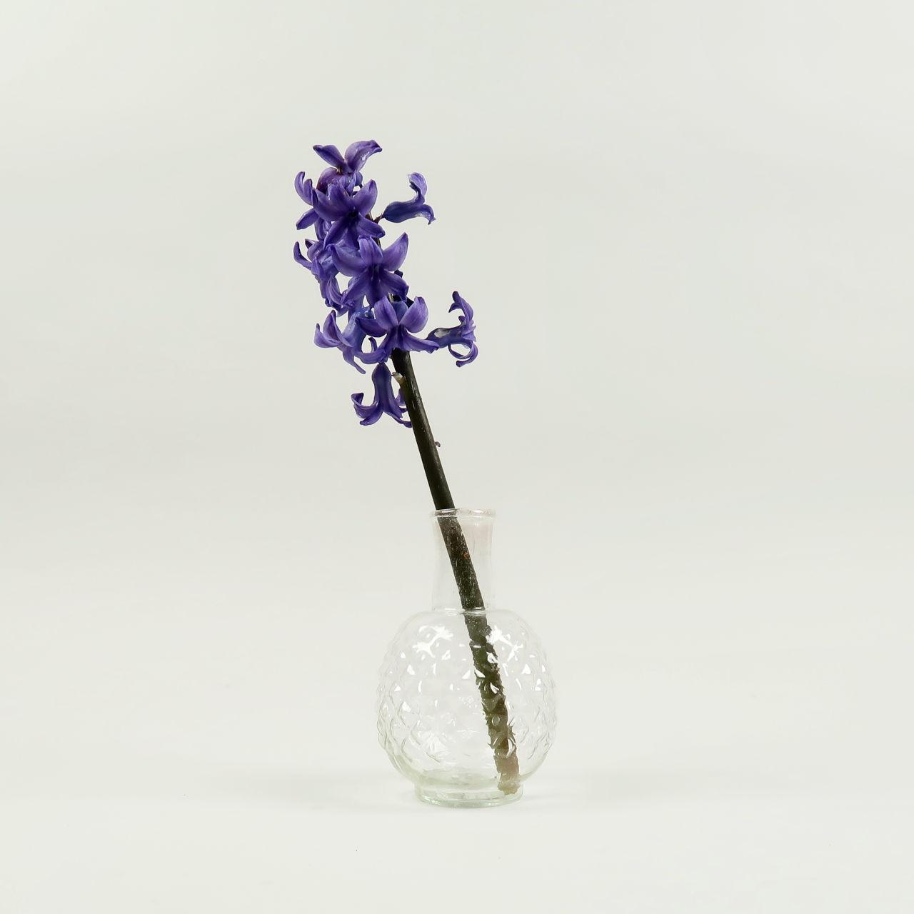 Dot Buds Vase - Clear