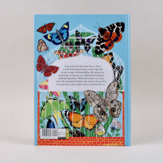The Butterfly House - Katy Flint & Alice Pattullo