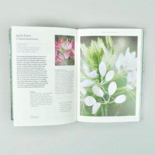 The Flower Garden - Clare Foster & Sabina Rüber