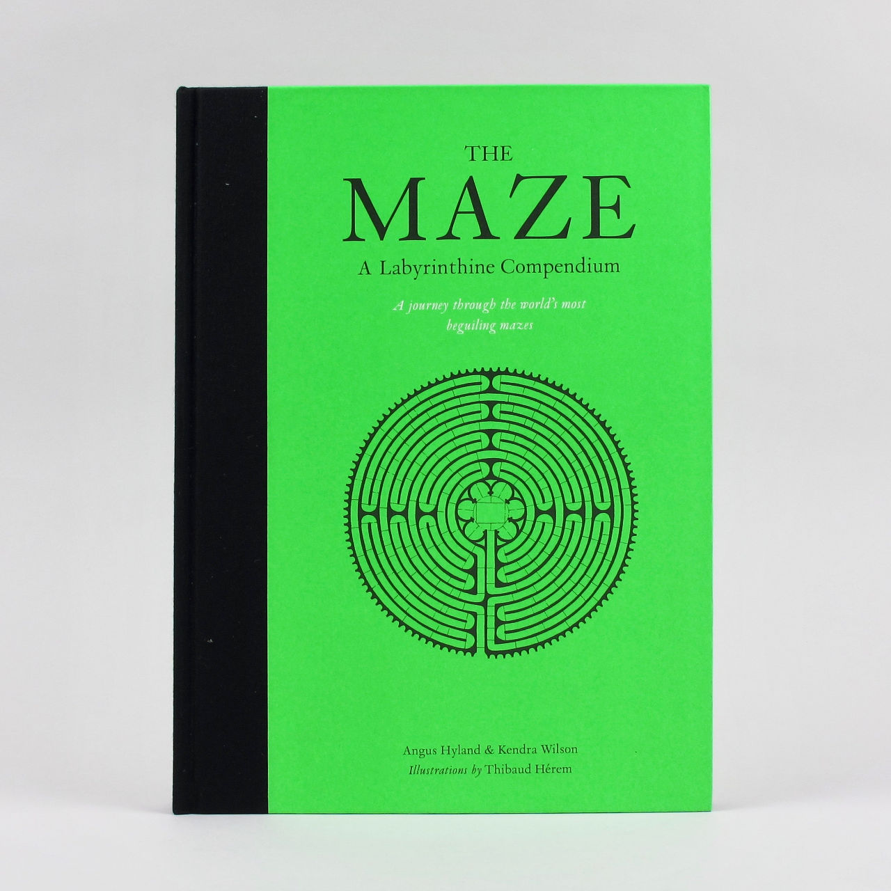 The Maze: A Labyrinthine Compendium - Angus Hyland and Kendra Wilson