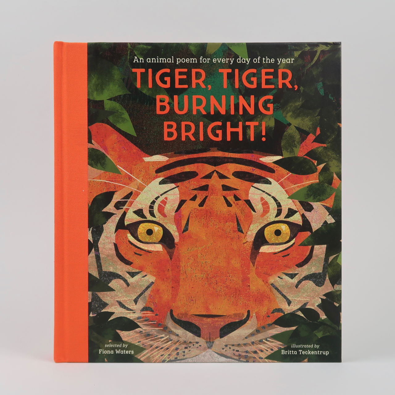 Tiger, Tiger, Burning Bright! - Fiona Waters & Britta Teckentrup